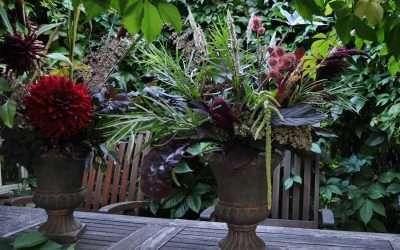 Sunday Funday – kukkamaan sadonkorjuun pauloissa